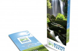 Beyond Toxics Brochure